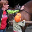 Timi se ni mogel nabožati mehke kože konja.