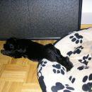 Super udobno spanje