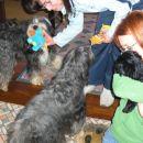 Shu, Nataša, Tara, Ajša in Kimi pred odhodom