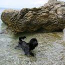 tudi zaplaval sem pogumno