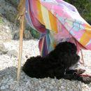 po napornem plezanju in norenju pa sem si takole spočil v svojem šotorčku