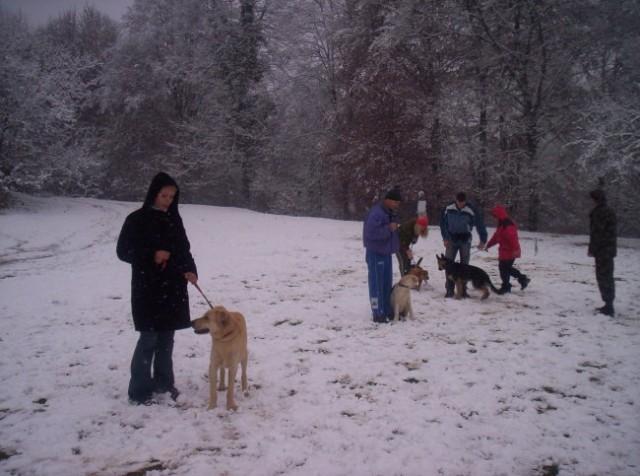 Zakljucek mala sola 18.11.2007 - foto