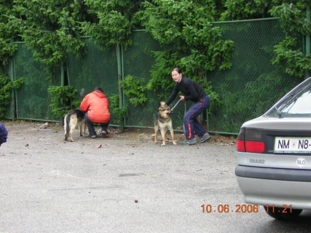 Izpiti 10.6.2006 - foto