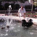 Šibenčani sicer nekaj vpijejo da se pes že ne bo kopal v njihovem vodnjaku ampak meni je p