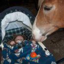 Moj prvi stik s konjem