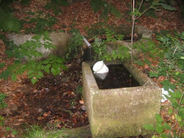 Globoko v gozdu Kuretno...vodaa