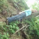 polonca pleza na drevo :D