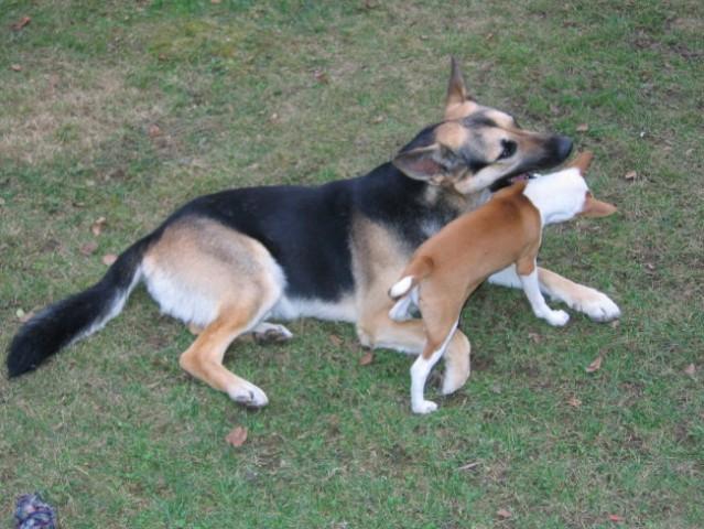 Tija & Bono - foto