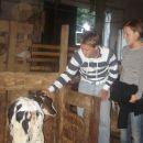 Izlet na Koroško(9.sept. 2006)