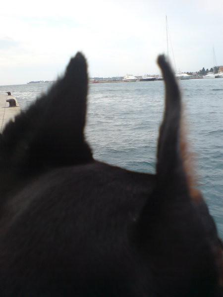čarna na morju in s kiro - foto