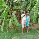 nasad babaninih palm v oazi