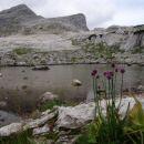 Čez Hribarice do Sedmerih jezer-Rjava mlaka