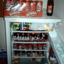 zaloga poljskega piva