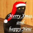 mačji božiček