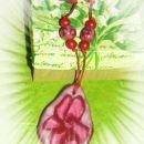 samotni cvet