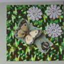 HOLOGRAM/8/ metuljev let