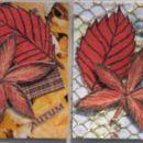 Autum leaves 1