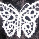 metuljcek