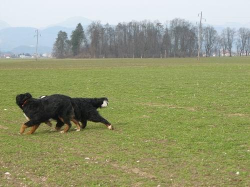 Atos na obisku pri Rini,24.3.2006 - foto
