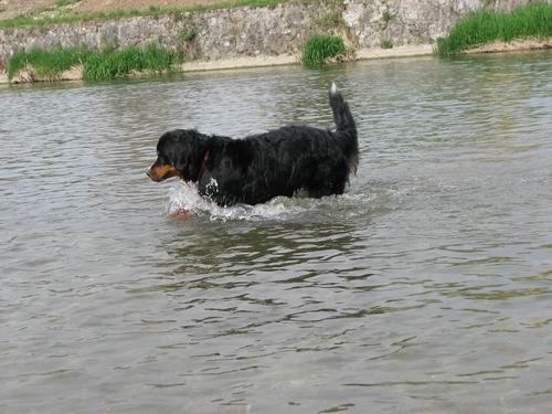 Rina in Gany-sprehod,26.4.2006 - foto