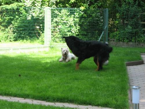 Rina in Timy,5.6.2006 - foto