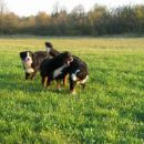 Rina,Atos,Best,Tim in Zoya,16.10.2007