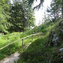 V botaničnem vrtu na Dobraču.