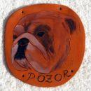 bulldog - 7 € SOLD
