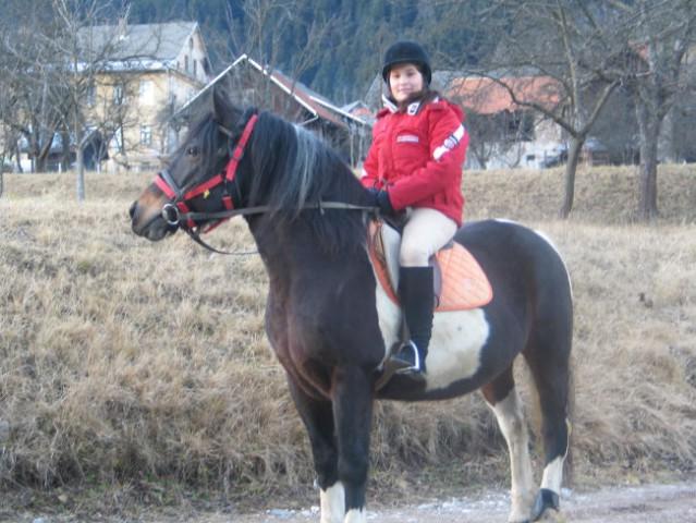 Konji - foto
